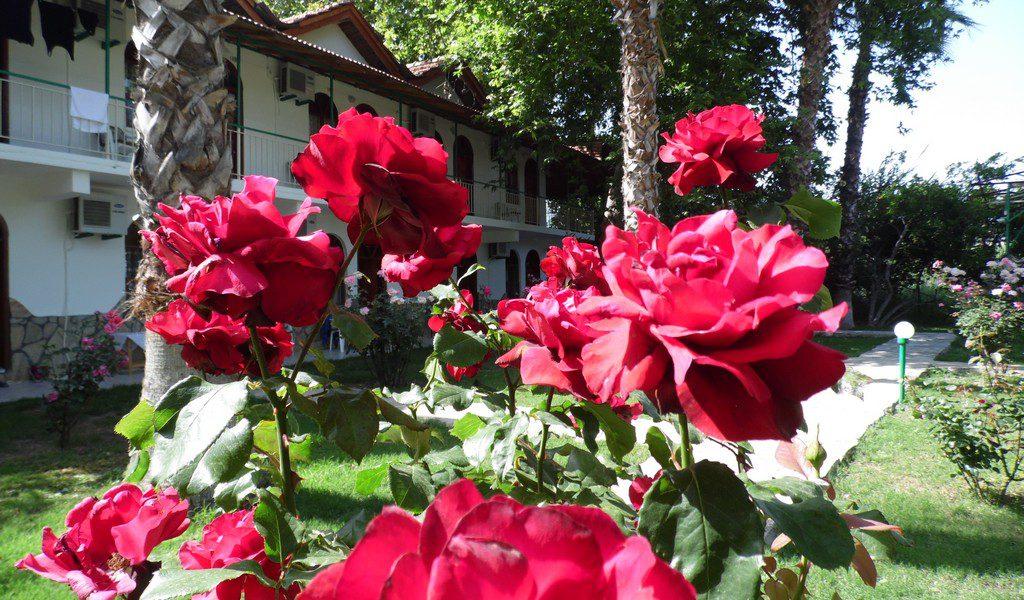 yavuz_hotel05