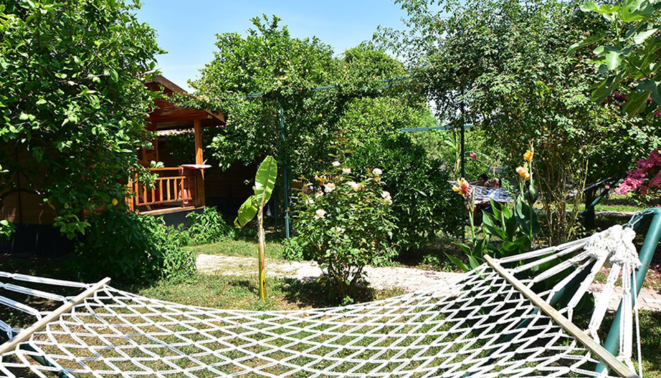 lemon_garden_lodge04